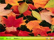 Hidden Stars: Colorful Leaves